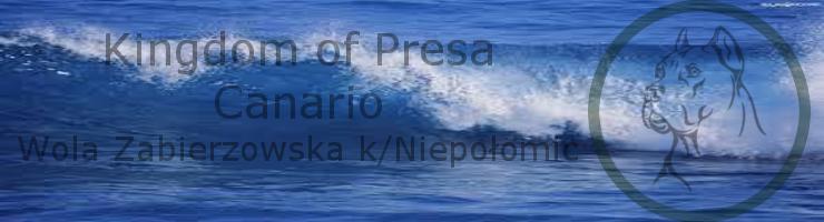 Kingdom of Presa Canario